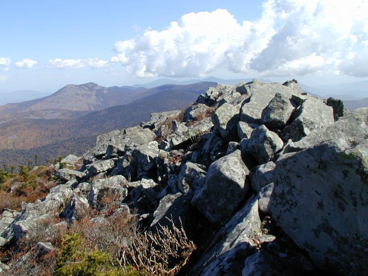Новый охраняемый природный парк появится в Приморье в 2021 году