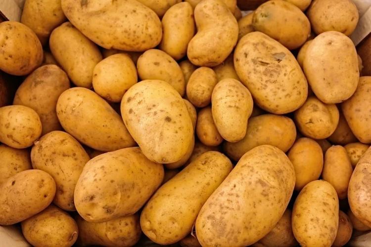 Правительство прокомментировало ситуацию с овощами в крае