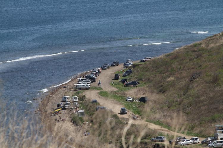 Идем в горы: В субботу лига ходьбы «Женьшень» отправится на Русский остров