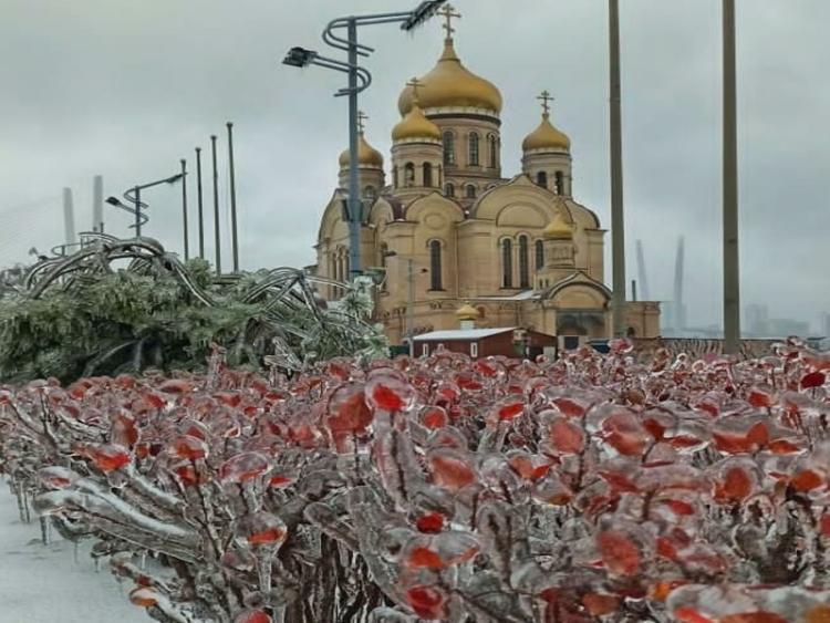 Никогда такого не видела: Владивосток в ледяных объятьях