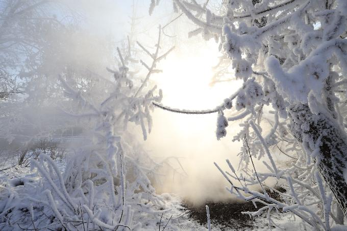 Завалит снегом: прогноз погоды на неделю 7-13 декабря в Новосибирске