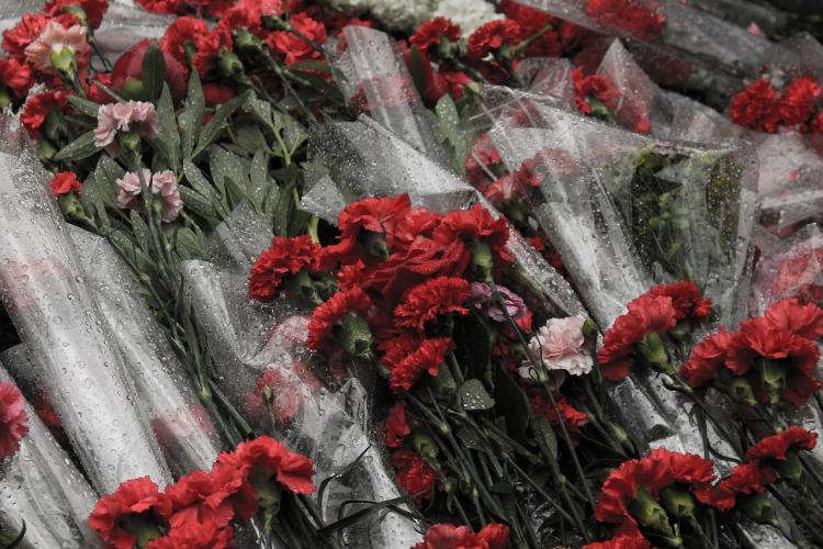 Память героев Отечества почтят во Владивостоке