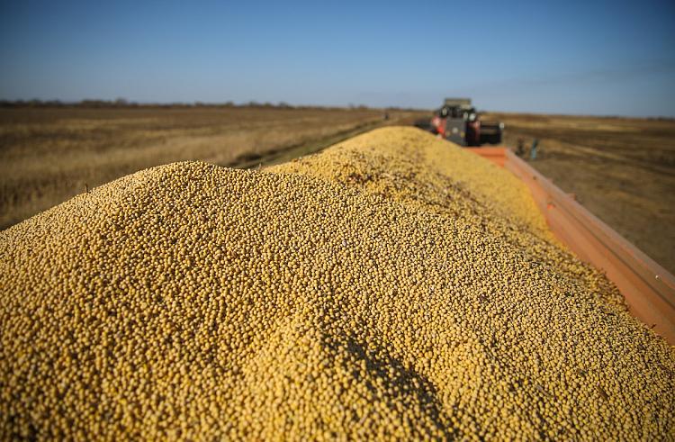 Приморье получило миллиарды долларов с экспортной продукции