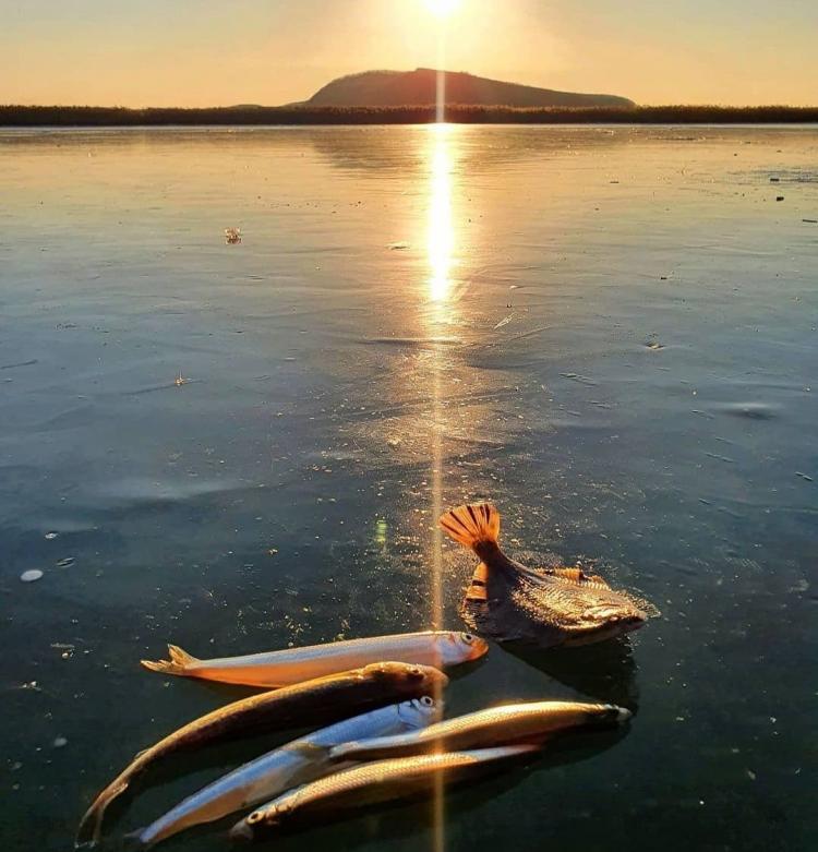 Автор-фотохудожник: фото колорита приморской зимней рыбаки обсуждают в сети