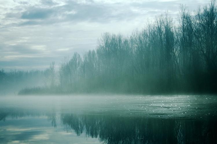 «Сказочная красота»: фото приморской реки обсуждают в сети