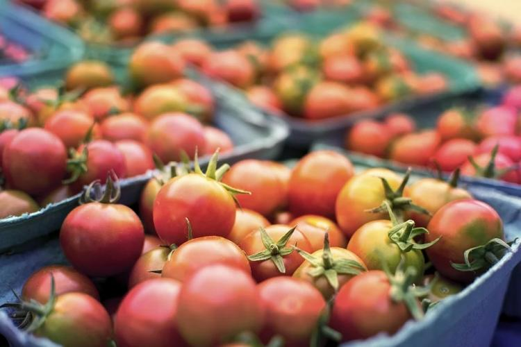 «Нет слов»: владивостокцы жалуются на «огромные» цены в супермаркетах
