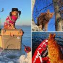 На рыбалке, на сапе и за грибами: приморский инстакот Симба стал звездой