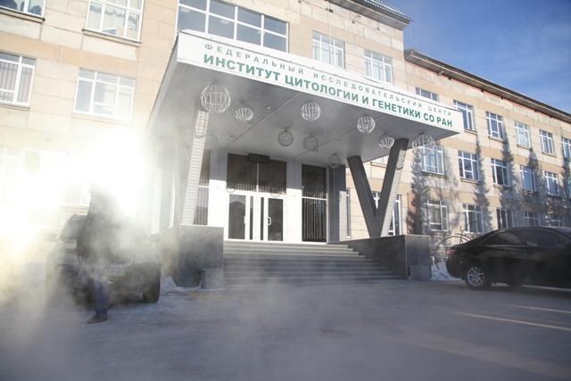 Бастрыкин взял под личный контроль зарплаты новосибирских ученых