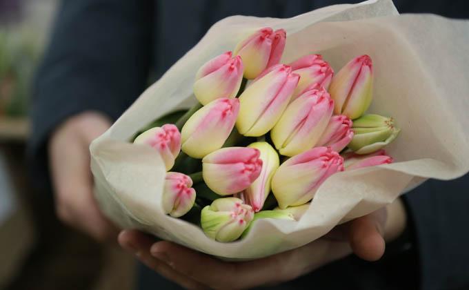 Урожай тюльпанов готовятся собрать в новосибирских теплицах