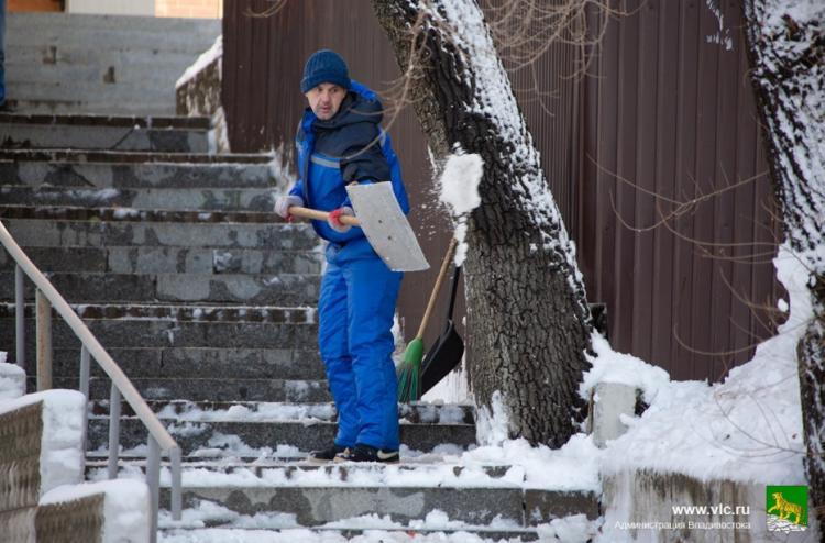 Во Владивостоке оштрафовали 11 организаций за неубранный снег