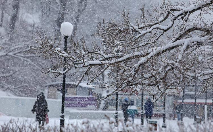 Снег, метель и штормовой ветер обрушатся на Приморье