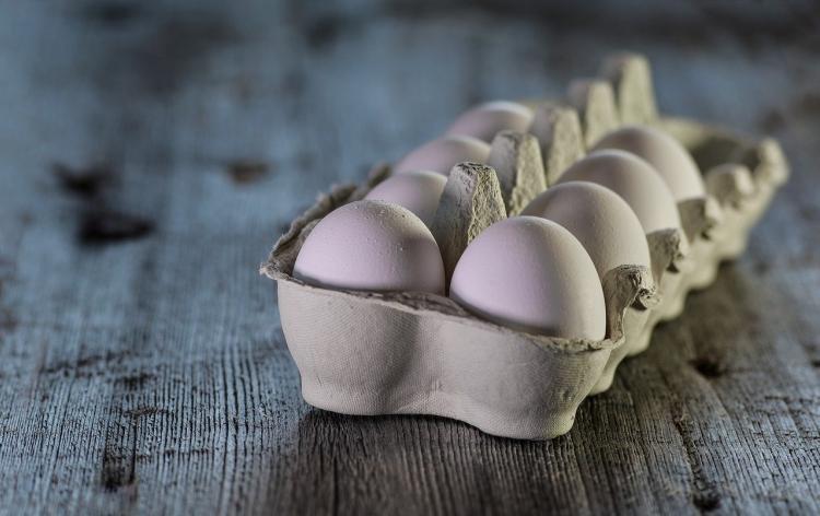 Диетолог рассказала, как выбрать качественные яйца