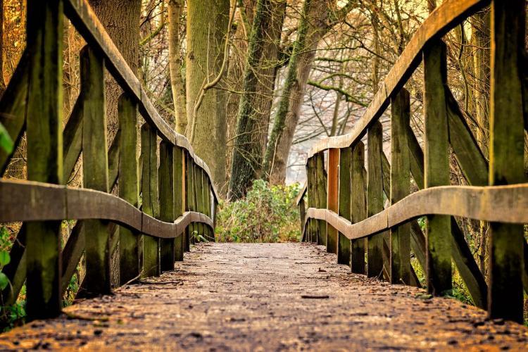 Приморский мост испугал жителей края