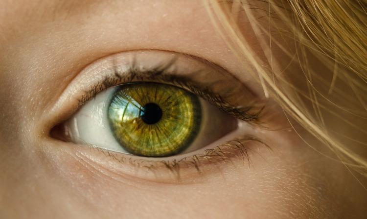О чем говорят синие круги под глазами