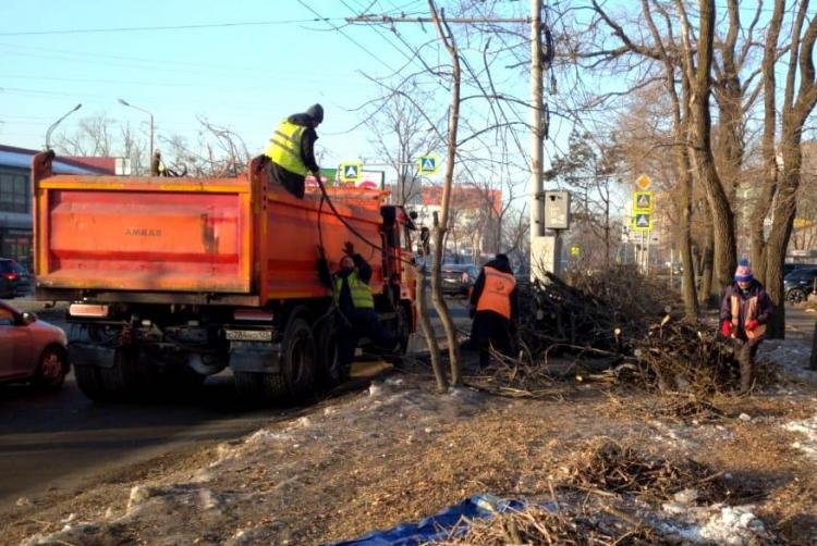 Владивосток готовится к общекраевому субботнику