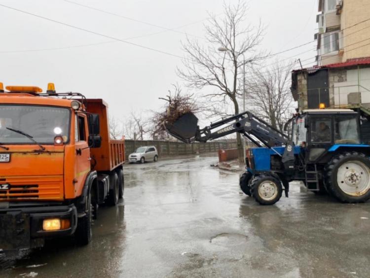 Во Владивостоке продолжают убирать упавшие ветки