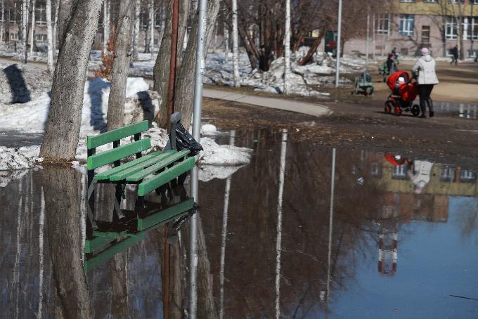 Прокуратура обвинила власти Новосибирска в некачественной уборке города