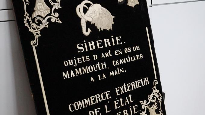 Музейные тайны: загадка таблички из кости мамонта