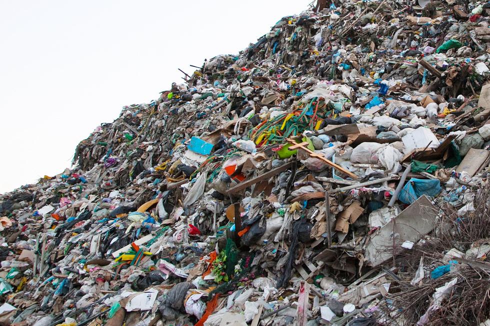Завод сортировки бытовых отходов начнет работу в Новосибирске в 2021 году