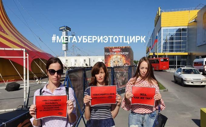 Цирк-шапито проиграл суд зоозащитнице из Новосибирска