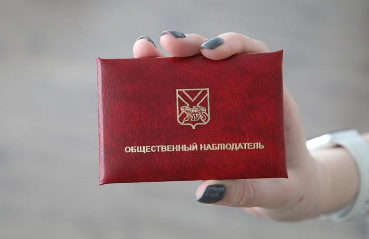 Имена общественных наблюдателей во Владивостоке станут известны на неделе