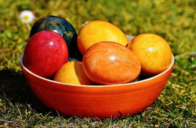 Диетолог объяснила влияние пищевых красителей для яиц на здоровье