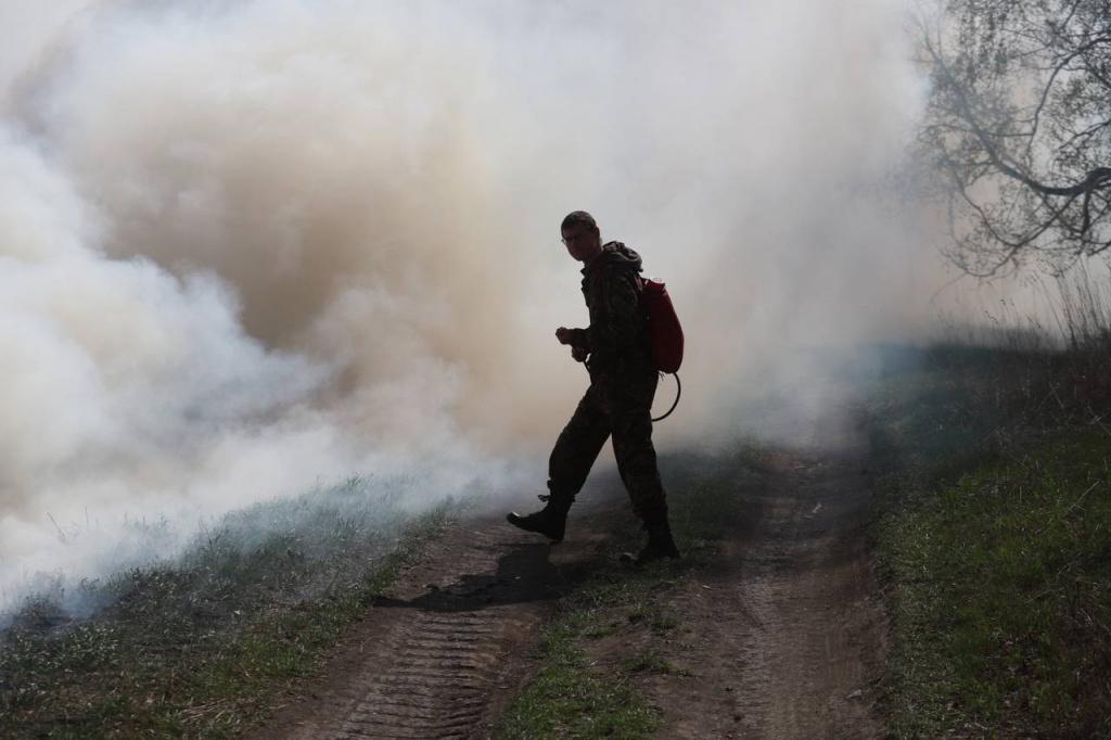 Уголовное наказание грозит поджигателю 100 домов из Мошковского района