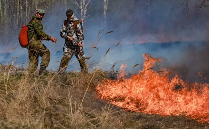Борьбу с лесными пожарами оценил губернатор Андрей Травников
