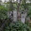 Чужие кости: в Приморье вандалы осквернили могилы на кладбище