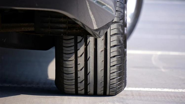 «Лезут под колеса»: владелец авто рассказал о раздражающей его проблеме