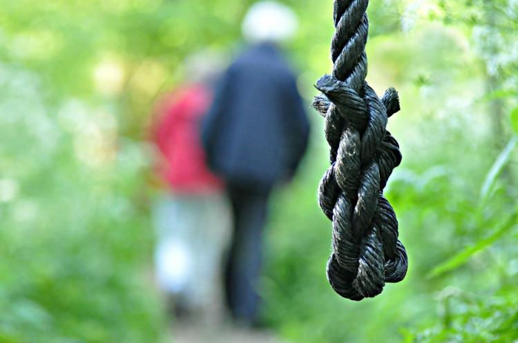 В Госдуме назвали альтернативу смертной казни