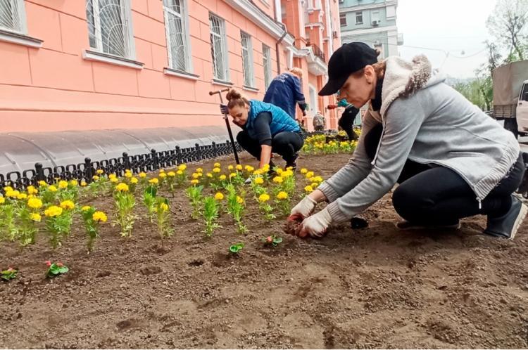 Яркие цветочные композиции создают на улицах Владивостока