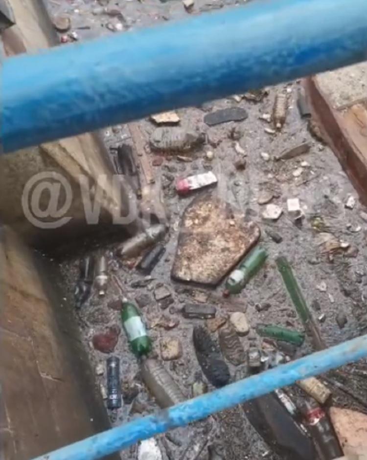 «За что всё это»: море во Владивостоке утопает в мусоре