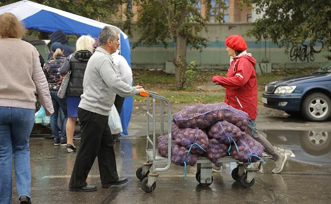 Картофель резко подорожал в Новосибирске