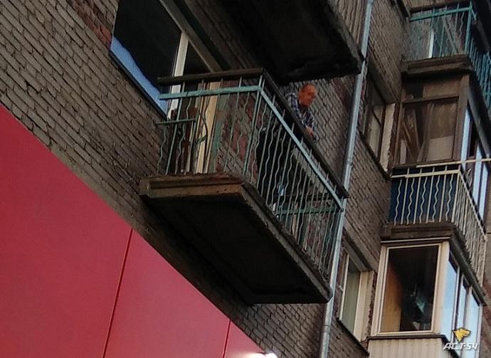 Кошку со второго этажа выкинул житель дома по улице Кирова в Новосибирске