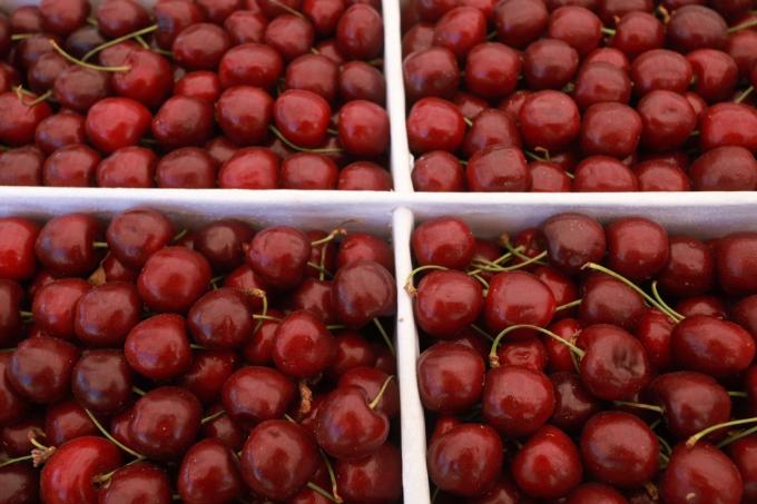 Как выбрать вкусную черешню – три важных правила