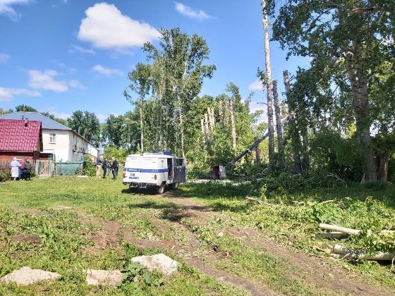 Люлька с рабочими рухнула во время рубки деревьев в Коченевском районе