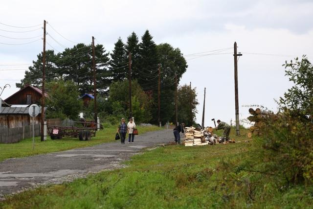 Районы с самыми злыми клещами назвал новосибирский Роспотребнадзор