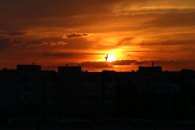 Магнитная буря обрушится 24 июля на Новосибирск