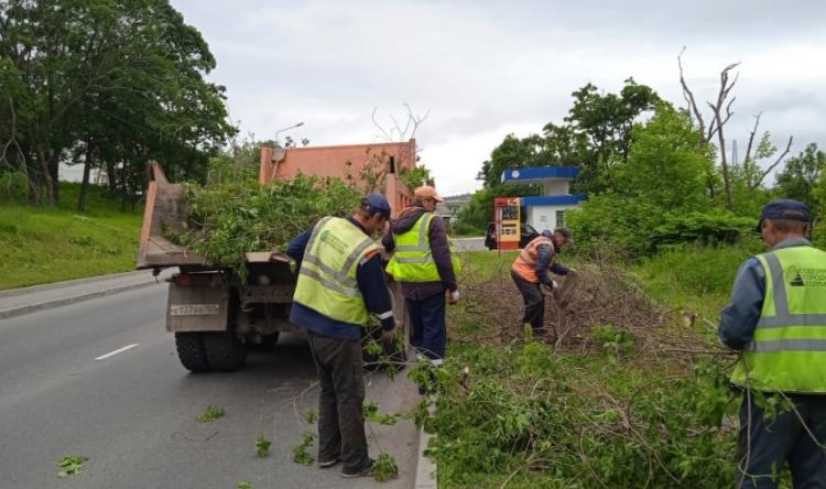 Во Владивостоке продолжают вывозить поваленные ветки и деревья