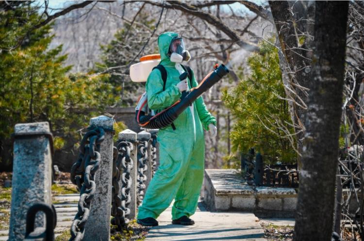Во Владивостоке парки и кладбища обрабатывают против клещей