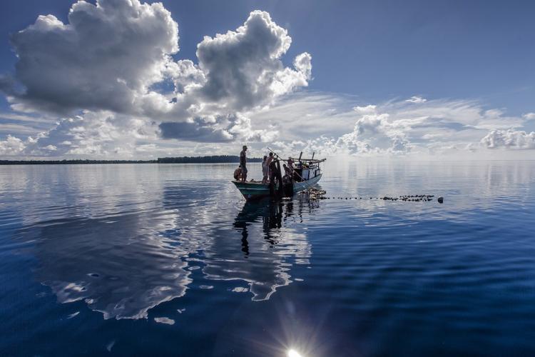 У вод Русского спасли семь человек с заглохнувшего катера