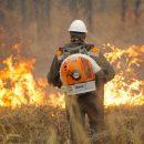 В Приморье ввели особый противопожарный режим