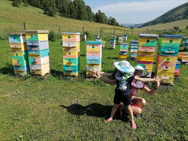 «Мёд чистый, как слеза»: Медовый спас-2021 отмечают православные Новосибирска