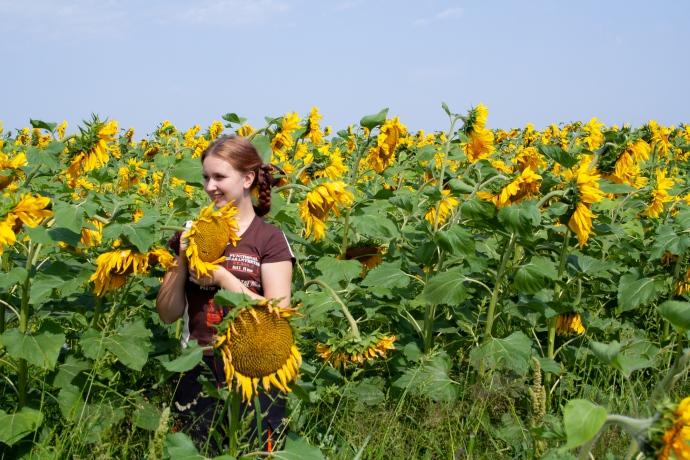 Когда потеплеет в Новосибирске - погода на выходные 14-15 августа
