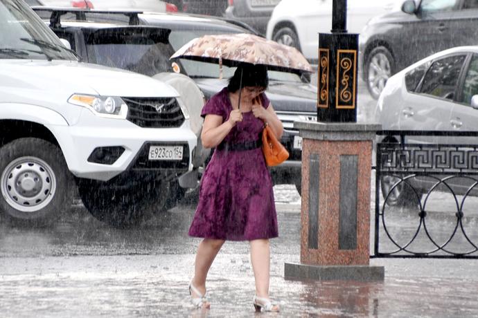 Точечные ливни в Новосибирской области обещают синоптики до 6 августа