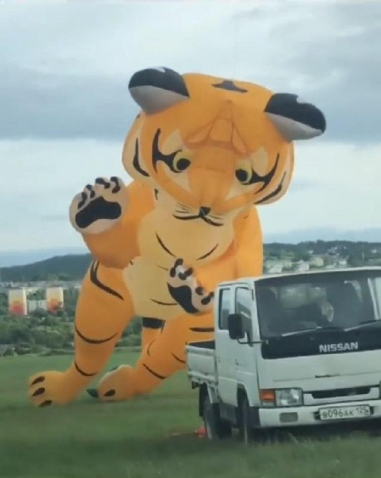 «Страшное нападение» тигра заметили в Приморье