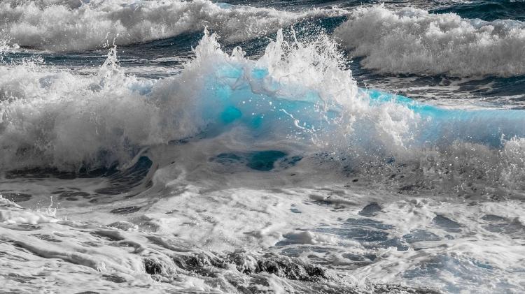 «Бедные ежи»: жители отметили красоту бухты Приморья