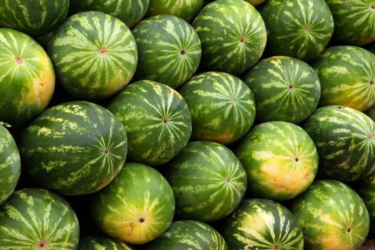 В Приморье из-за температурных аномалий подешевели овощи