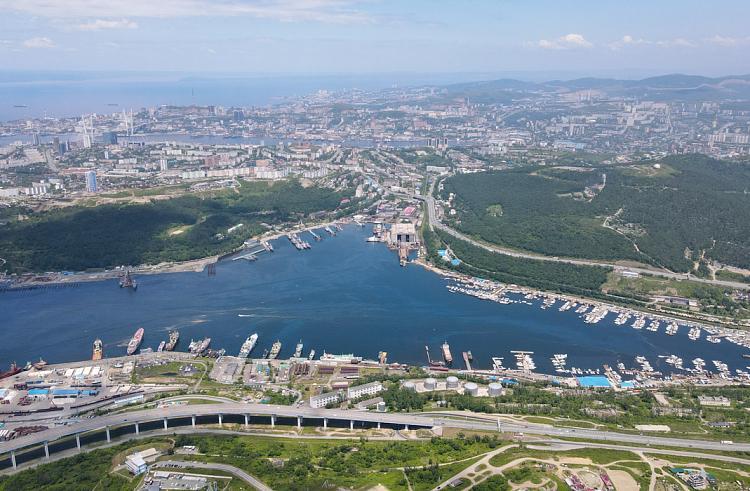 Иностранцы могут построить в Приморье парковки и реабилитационный центр